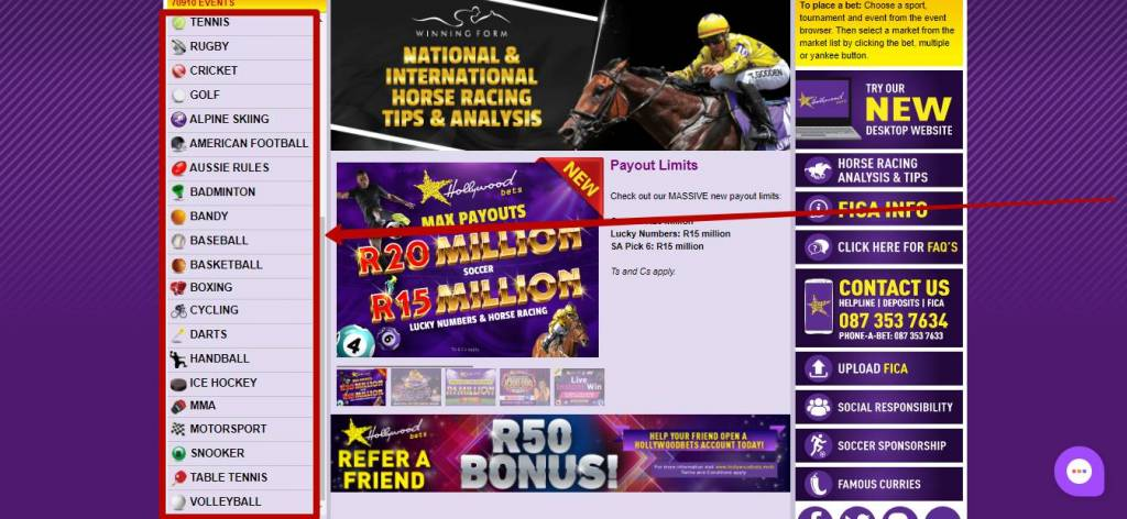 Hollywoodbets sports betting types